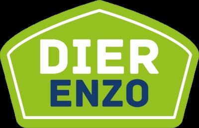 Dier Enzo